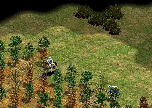 Уменьшенные деревья в Age of Empires 2 увеличивают обзор (скриншот из игры)